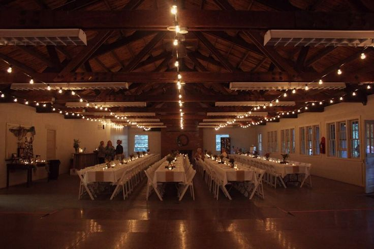 look for these lights for the reception at camp wakonda