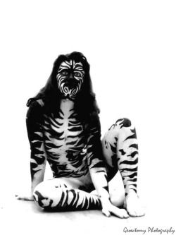 Zebra, Curious