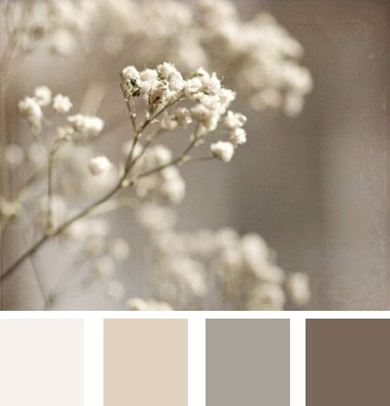 A perfect neutral pallete that allows for contrast