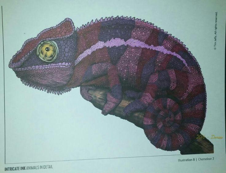 Chameleon 3 Page 8 By Denise PL Coloring BooksChameleonsVintage