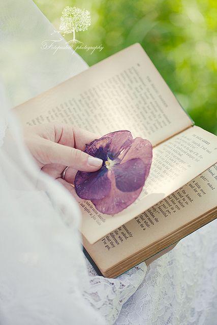 Reader's Love For Reading