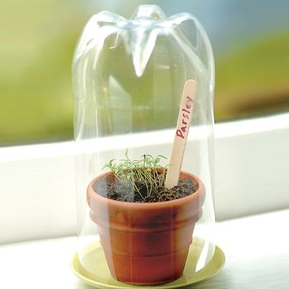 How to make it  Cut the top from a clear 2-liter soda bottle.  Find a flowerpot…