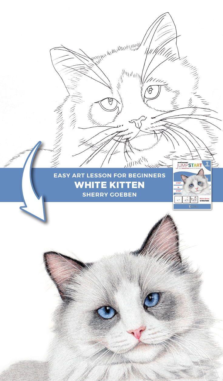 Jumpstart Level 3 White Kitten Drawings Pencil Drawings Pencil Drawing Tutorials