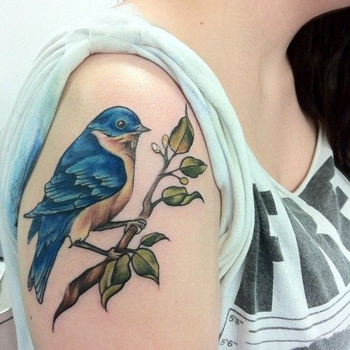 Bluebird On Branch Tattoo