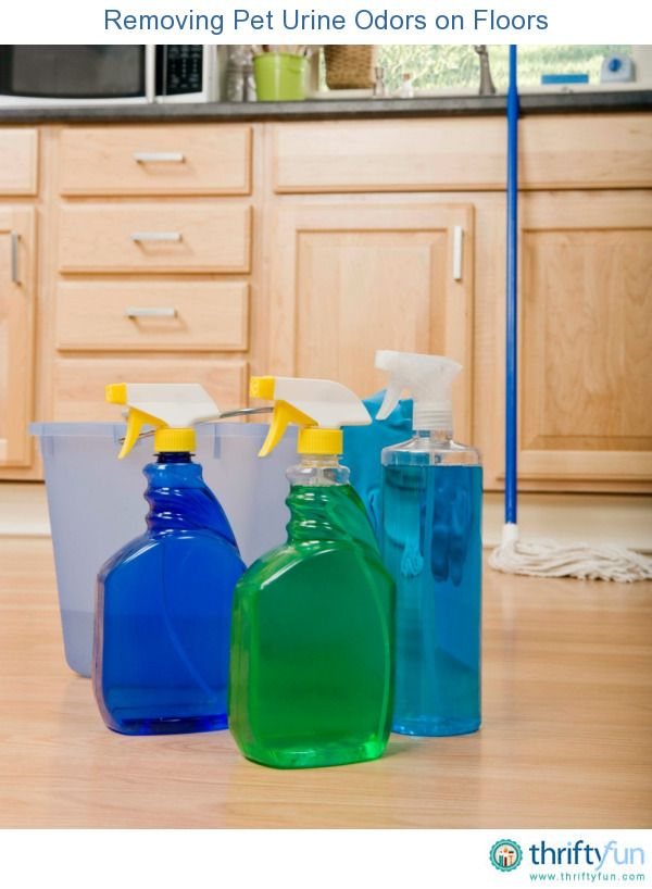 This is a guide about removing pet urine odors on floors. The are several ways to remove pet urine odors from your tile, laminate, hardwood, and resilient floors.