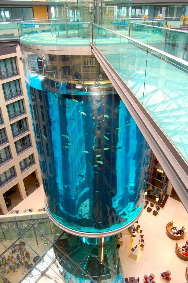 World´s largest Cylindrical Aquarium at Radisson Hotel, Berlim - GERMANY! <3