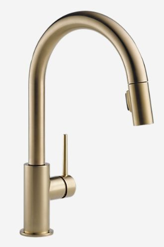 Gold Trinsic Faucet