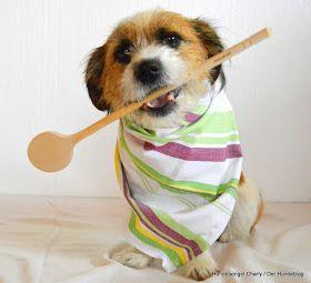 hundekeksrezept, hundekekse selber backen, hund, tier, hundeblogger
