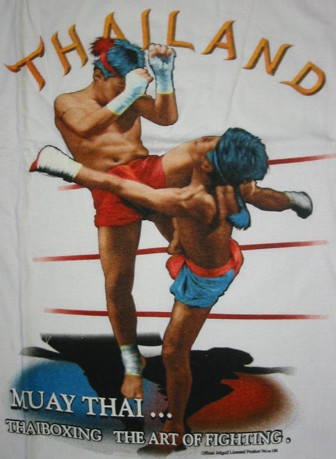 the mixed martial arts instruction manual striking