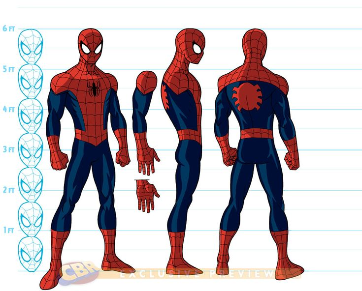 Ultimate Spiderman turnaround, arm is detached to show what you could do with the under arm. Hand is also detached to show different angles.