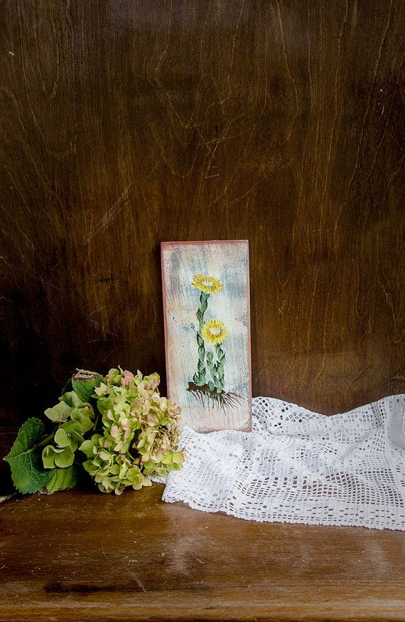 Tussilago painting coltsfoot picture shabby chic by vikisflowers, $45.00