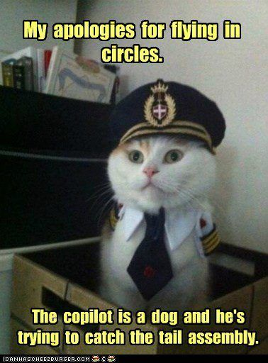 8ce117656cfa1669e7ac316278a79407 laser pointer pilots 128 best aviation humor images on pinterest aviation humor,Flying Funny Airplane Meme