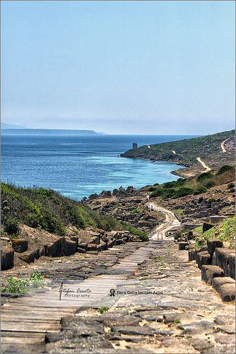 Ancient road to Tharros | San Giovanni di Sinis, Sardinia