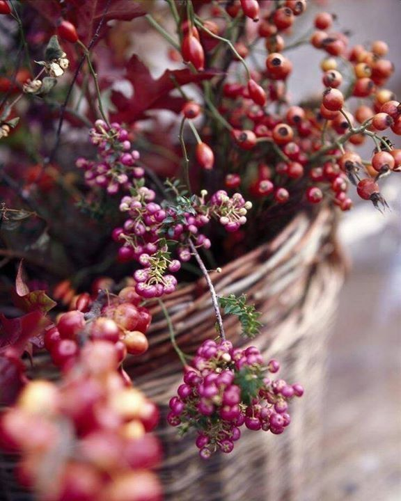 baskets and autumn berries