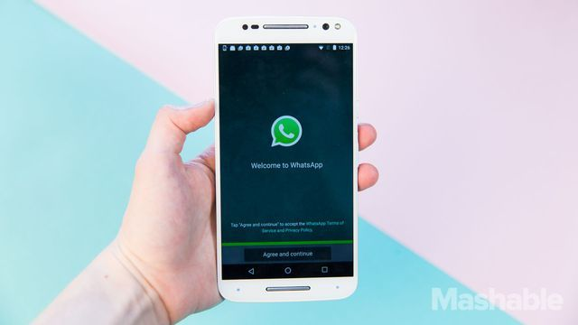 How to keep Facebook from seeing your WhatsApp data http://mashable.com/2016/08/25/facebook-whatsapp-opt-out/