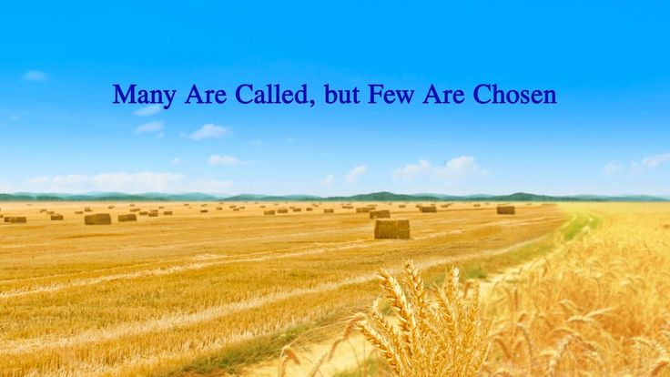 "Almighty God's Word ""Many Are Called, but Few Are Chosen"" 