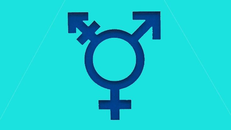 """Language: The pronoun """"he"""" refers to males and """"she"""" to females. But some people are neither - and in the US an increasing number are choosing different pronouns."""