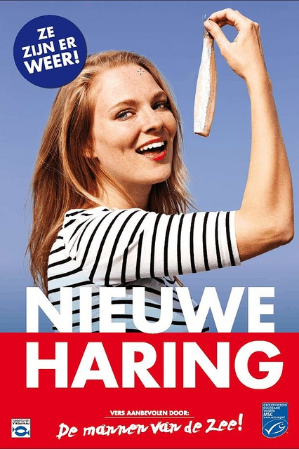 Hollandse nieuwe, the new Dutch herring