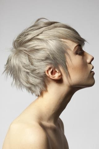 Short hair, longer layers and grey coloring