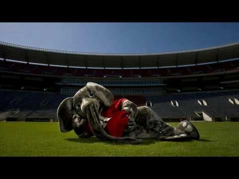 The day the Birmingham police helped the University of Alabama football mascot retrieve his paws - http://alabamapioneers.com/big-al-and-the-lost-paws-by-jean-butterworth/