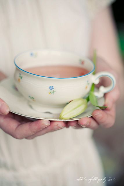 Love tea with our range of premium tea and teaware at TheSunGarden.com