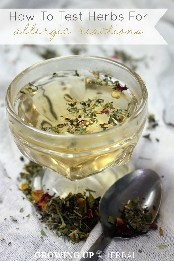 How To Test Herbs For Allergic Reactions | GrowingUpHerbal.com | Did you know your child can be allergic to herbs? Here's an easy way to check for herb allergies.