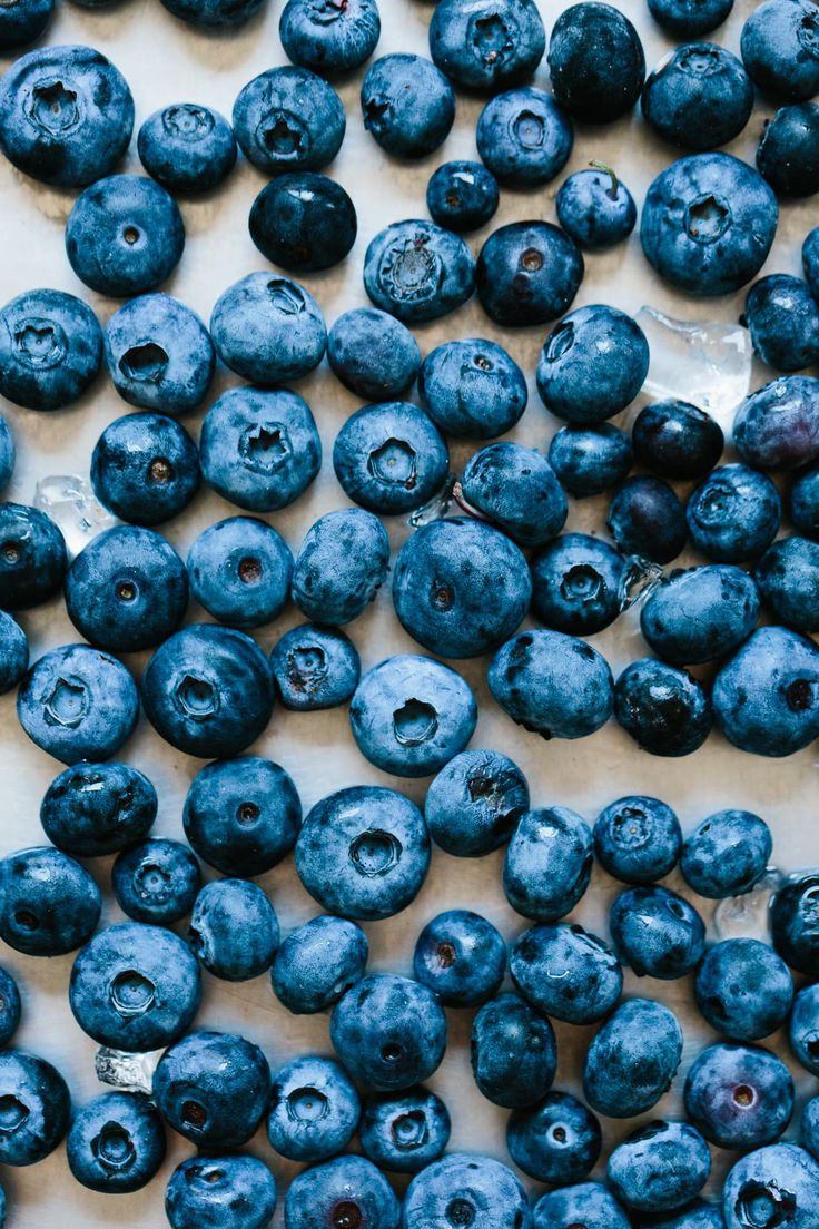 Freezing Is the Easiest, Fastest Way to Preserve Summer Fruits and Vegetables —…