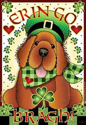 Jeremiah Junction IRISH SETTER - ERIN GO BRAGH Art-Snaps Magnet MPN: JP064 BREED: IRISH SETTER CONDITION: New SIZE: 2 1/2 in w x 3 1/2 in h MATERIAL: crystal clear acrylic magnet High quality, crystal