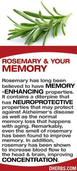 Rosemary has long been believed to have memory-enhancing properties. It contains a diterpine that has neuroprotective properties that may protect against Alzheimer's disease as well as the normal memory loss that happens with aging. Remarkably, even the smell of rosemary has been found to improve memory. In addition, rosemary has been shown to increase blood flow to the head & brain, improving concentration. #dherbs #healthtips by ThriftyMoM
