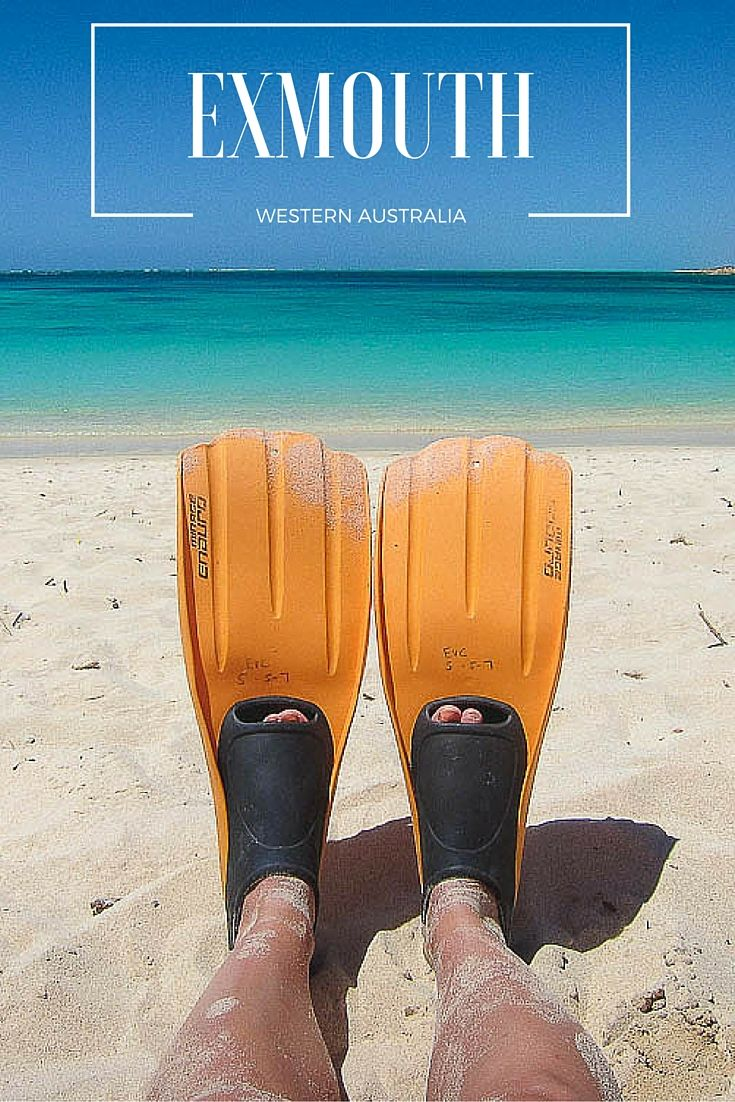 Ever wanted to walk straight into the ocean and immediately be able to snorkel a coral reef with fish, sharks, and sea turtles all within a few steps of the beach? Golf with emus? Swim with manta rays and giant whale sharks? In the town of Exmouth, Western Australia, it's all possible.