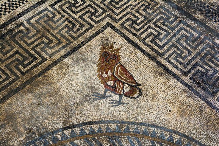 На юге Франции нашли римский дом с мозаиками. - Маяк Парнаса