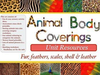 animal body coverings unit resources lesson plans unit plans science resources the unit. Black Bedroom Furniture Sets. Home Design Ideas