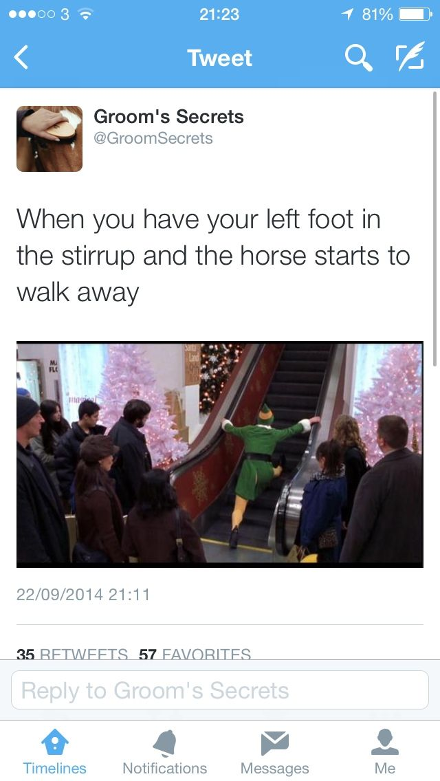 Horse Rider Problems : Photo