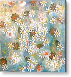 Daisy Days Acrylic Print by Amy Stielstra