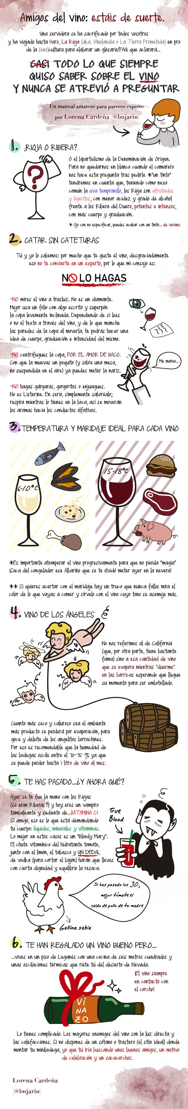 Glosario ilustrado para parecer un experto en vinos