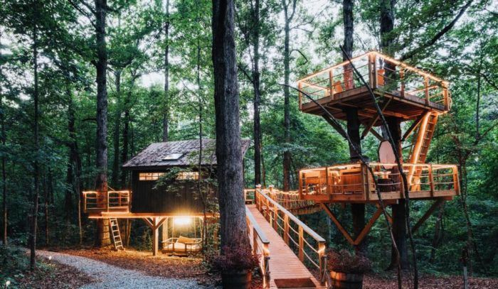 South carolina treehouse camping rustic canoe in 14 miles canoe south carolina treehouse camping rustic canoe in 14 miles canoe out 10 miles private wildlife refuge camping pinterest treehouse canoeing and publicscrutiny Choice Image