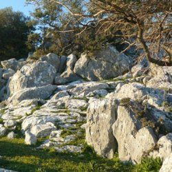 Alalkomenes ancient city | Archaelogical sites | Culture | Ithaki (Ithaca) | Regions | WonderGreece.gr