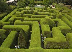 labyrinth: Lavender Gardens, Morningtonpeninsula, Gardens Gnomes, Victoria Australia,  Labyrinths, Hedges Maze, Summer Holidays, Ashcomb Maze, Mornington Peninsula