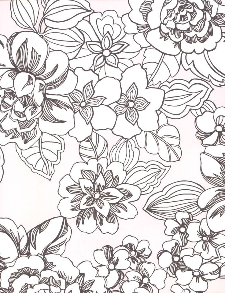 17 best images about free adult coloring pages on pinterest