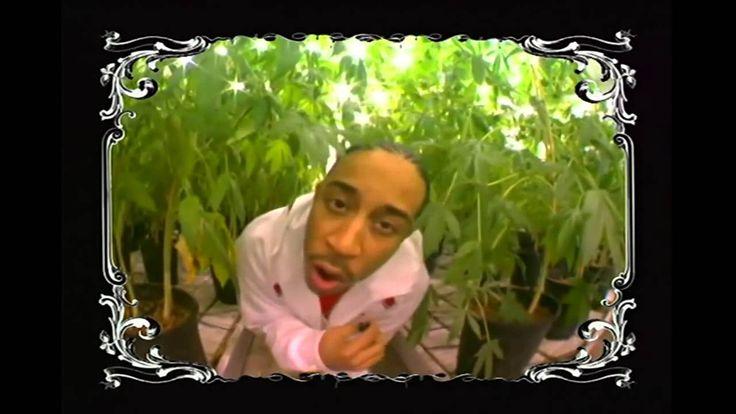 Ludacris   Blueberry Yum Yum