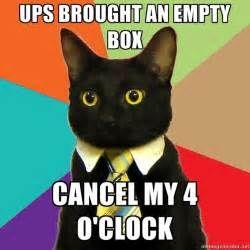 business cat meme generator