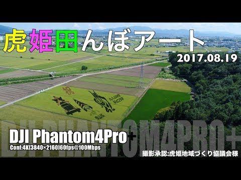 虎姫田んぼアート DJI Phantom4Proの動画紹介です!
