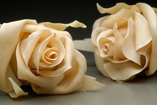 Delicious ivory roses, inspiring delusion & hope