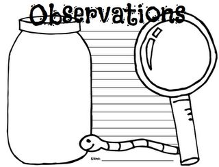 10 Free observation templates. Take your class outside for science and writing!