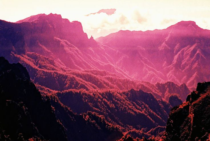 mountains: Pink Mountain, Cubicles, Colors, Beautiful, Landscape Photography, Pink Forests, Pink Natural, God First, Awesome Places