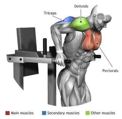 Kształtowanie mięśni klatki piersiowej nie należy do łatwych zadań. Być może nie wiedzieliście jeszcze, jakie ćwiczenie wpływa na ten aspekt naszego ciała najlepiej, właśnie dlatego polecamy przyjrzeć się propozycji (fot). Dzięki rozbudowie trzech części, w tym także tricepsu, łatwiej wam będzie podejmować się kolejnych wyzwań na siłowni. Budowa własnej siły pod tym kątem może się okazać kluczowa, dlatego każdorazowo konieczne będzie wykonanie tego ćwiczenia. #siłownia #trening ##atlas