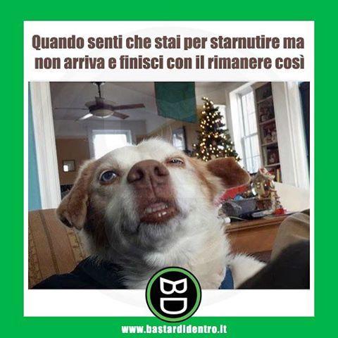 Quando sentì che stai per #starnutire - #bastardidentro tagga i tuoi amici e condividi le risate www.bastardidentro.it