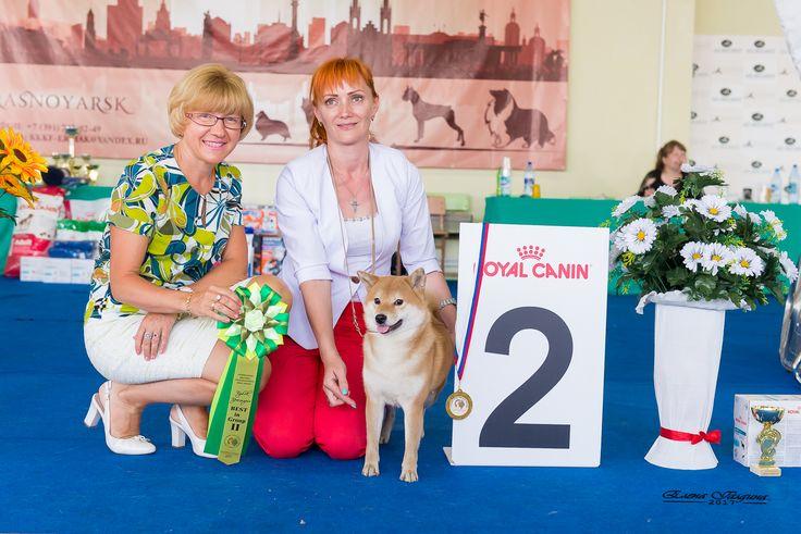 LAMBORGHINI INCIPITA VITA (15 months) - R.BIG  breeder Софа Павловска (Sofa Pavlovska)  owner Елена Сечкова (Elena Sechkova Charming Smile)