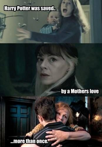 Harry Potter was saved by a mother's love more than once...