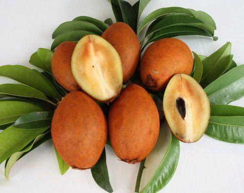 sapodilla fruit healthy fruits and veggies